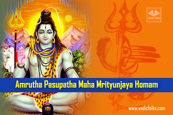 Mirtunjaya Homam Blog Banner